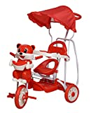 #10: Ehomekart LoveBaby Deluxe Musical Tricycle with Rocking Feature