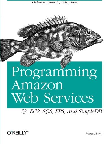 Programming Amazon Web Services: S3, EC2, SQS, FPS, and SimpleDB (Programming Amazon Ec2)