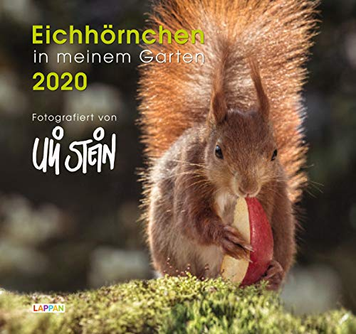 Eichhörnchen in meinem Garten 2020: Kalender
