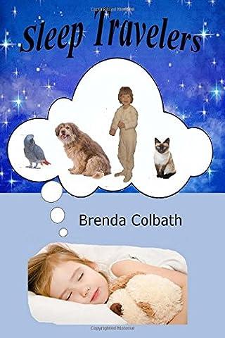 Sleep Travelers: The Story of Ning, Dog, & Boss Book 1