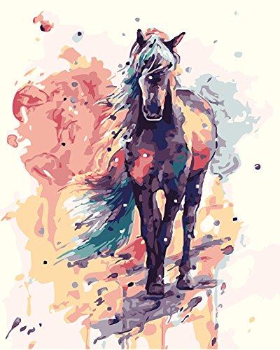 WATAKA DIY Malen Nach Zahlen für Erwachsene und Kinder Vorgedruckt Leinwand-Ölgemälde Kits Mit Holzrahmen für Home Haus Dekor mit MEHRWEGVerpackung - Schwarzes Pferd 16 * 20 Inch