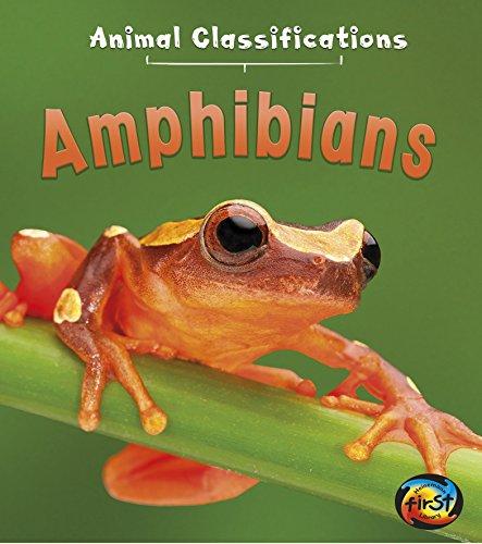 Amphibians (Heinemann First Library)