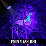 LE Ultra Violet LED Flashlight/Blacklight Torch, UV LED Flashlight, 9 LED 395nm, Pet Urine & Stain Detector, 3 AAA Batteries Included, Find Stains on Clothes, Carpet or Rugs Bild 1