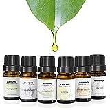 Aromatherapie Duftöl,Aromatisches Duftöl, ANYOYO 100% reines ätherisches Öl, 6x10ml natürliches Bio-Öl (Pfefferminze, Teebaum, Süßorange, Lavendel, Zitrone, Eukalyptus),Perfekter Partner für Aroma-Diffusor, Aromatherapie-Öl-Geschenk-Set…