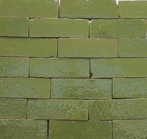 20Stk. Cotto Ziegel Bodenplatte 10x10x2,0cm Bodenfliesen Fliesen (Brikett grün pistazie)