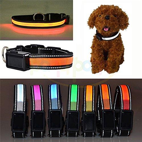 Solar USB Akku Halsband für Hund mit Licht LED und reflektierende verstellbar blinkenden LED Tiere von Sicherheit des Hundes, wasserdicht, Maßnahme für Klein Mittel Groß Hunde von Haustieren–Price XES M Arancione