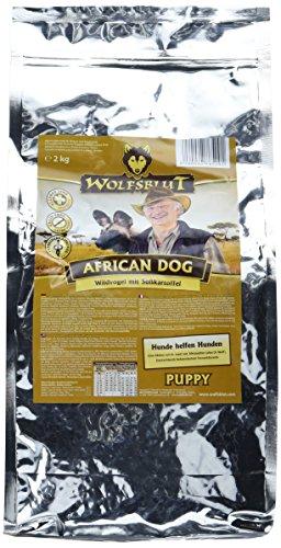 Wolfsblut African Dog puppy, 1er Pack (1 x 2 kg)