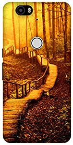The Racoon Lean forest road gold hard plastic printed back case / cover for Huawei Nexus 6P