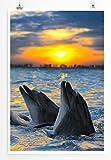 Eau Zone Home Bild - Tierbilder – Delfingruppe bei Sonnenaufgang im Meer- Poster Fotodruck in höchster Qualität