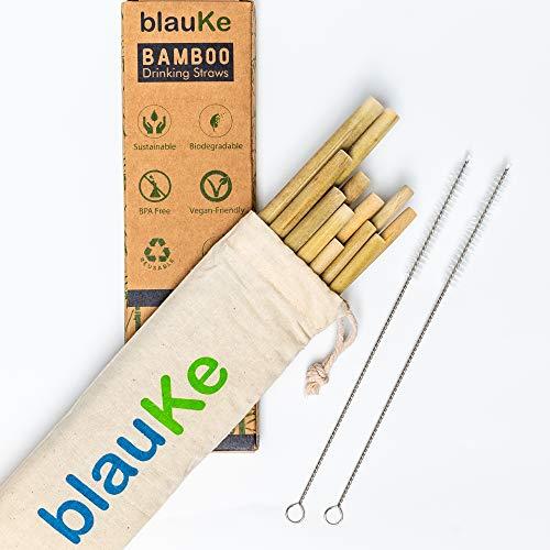 Paquete de 12 pajitas de bambú con 2 cepillos de limpieza y bolsa de almacenamiento (22cm) - Biodegradable, ecológico, reutilizable, pajitas - la mejor alternativa para pajitas de plástico