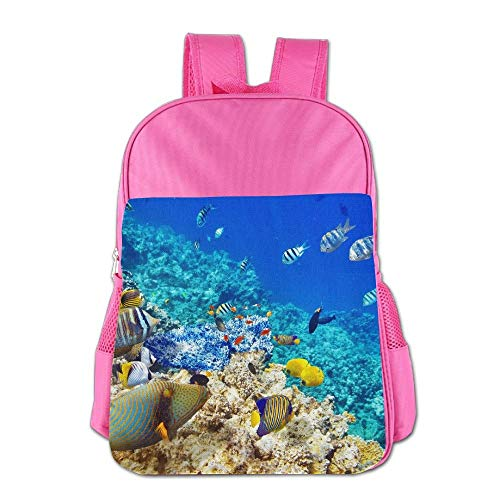 htrewtregregre Marine Fishes Coral Reefs Schule Backpack Kinder Shoulder Daypack Kid Lunch Tote Taschen RoyalBlue -