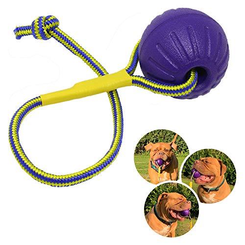 Rosi's Barf-Glück Premium Hundeball mit Seil ⌀ 7cm Hunde Wurfball unzerstörbar - - Große Hundespielzeug Seil Hunde