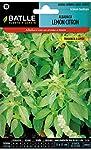 Semillas Aromáticas - Albahaca Lemon Cit...