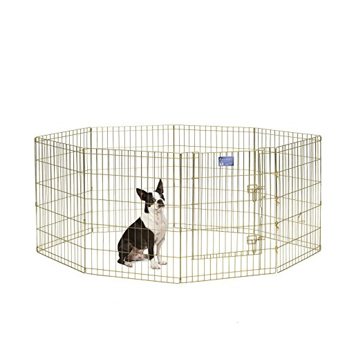 Artikelbild: Midwest Homes for Pets MidWest Exercise Pen mit Tür, 76,2cm, Gold