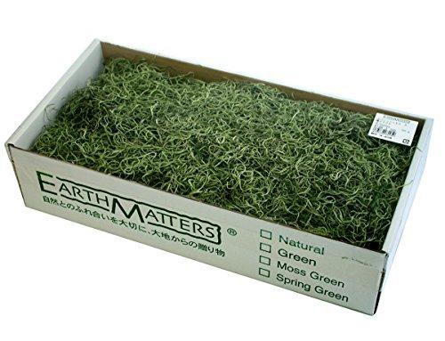 Spanisch Moss moral box 220 g 700 Grün [55] 76 - 6103 - 700 (Moss Spanisch)