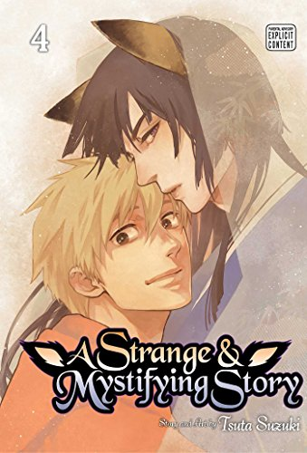 Strange and Mystifying Story, Vol. 4 (A Strange and Mystifying Story, Band 4)