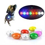 PENVEAT 7LED-Taschenlampe, für Haustiere, 7verschiedene Farben, Schalter, leuchtet im Dunkeln, Hunde-/Katzen-, Hunde-Leine II