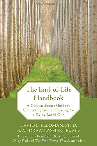 The End-of-Life Handbook: A Compassionate Guide to Connecting with and Caring for a Dying Loved One by David B. Feldman (2008-01-01)