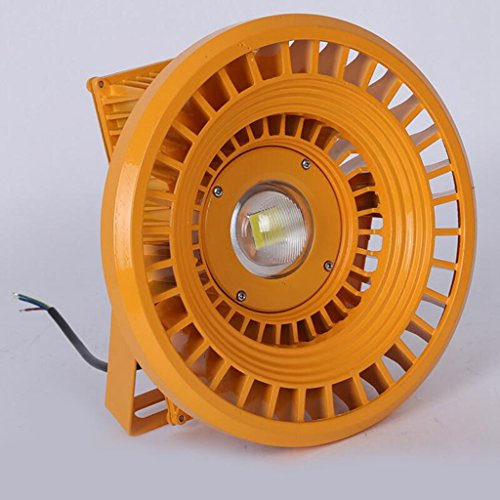 Aoligei Extérieur atelier entrepôt LED explosion éclairage étanche projecteurs 30*13*5cm 100W est une lumière blanche