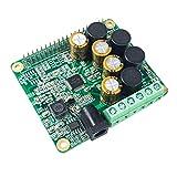 Inno-Maker Raspberry Pi HiFi AMP Module, 25W Class-D power amplifier TAS5713 Expansion Board