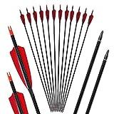 Toparchery Bogen und Pfeile 6er/12er Carbonpfeile für den Bogensport Naturfedern/Vanes 32 Zoll mit Pfeilspitzen geeignet für alle Recurves und Compoundbögen (Pures Carbon) (12)