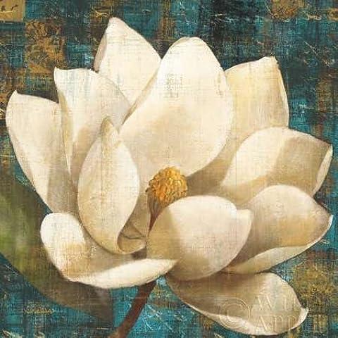 Impresión de Arte Fino en lienzo : Magnolia Blossom by Hristova, Albena - Medio (49 x 49 Cms)