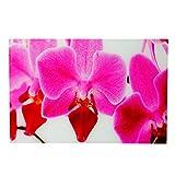 Mendler Glasbild T116, Wandbild Poster Motiv, 40x60cm ~ Orchidee