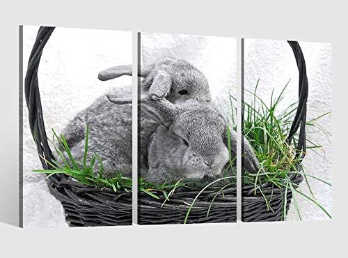 Leinwandbild 3 tlg Hase Ostern Korb Gras Bild Bilder Leinwand Leinwandbilder Tierwelt Holz Wandbild Kunstdruck 9AB1802, 3 tlg BxH:90x60cm (3Stk 30x 60cm)
