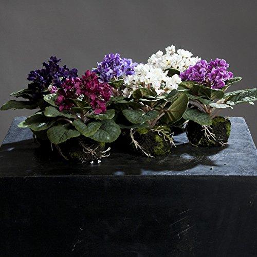 usambara-im-erdballen-19-cm-6-stuck-farbig-sortiert-kunstblumen-von-dpi