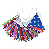 10m Polka Dot Double Sided Bunting