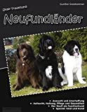 Unser Traumhund: Neufundländer