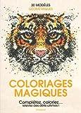 Coloriages magiques...