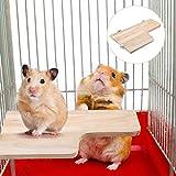 Sheens Piattaforma Criceto, Giocattolo Trampolino a Forma di L per Uccelli Parco Giochi per Arrampicata in Legno per Chinchilla Squirrel Gerbil Dwarf