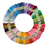 BOXCUTE Lot de 100 Echevettes de Fils Multicolores Pour Broderie Point de Croix Tricotage Bracelets Brésiliens
