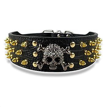 skyram (TM) 5,1cm Largeur or pointes en cuir clouté collier pour chien pour moyen/grand 38,1-61cm avec crâne cahrm
