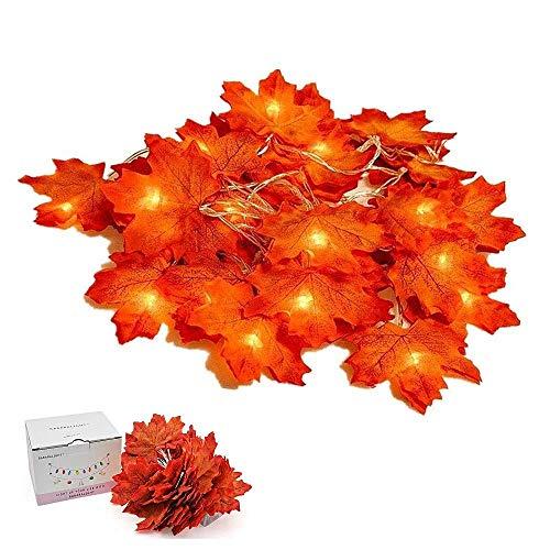 Suker Erntedankfest Dekorationen Herbstgirlande, Herbst Ahorn Lichterkette 13ft 40 LED, Herbst Girlande für Herbst, Halloween, Weihnachten, Picknick, Outdoor-Dekor