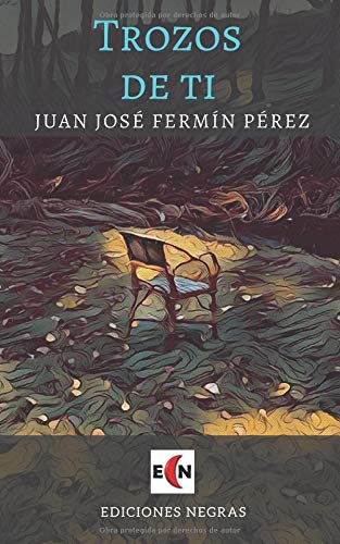 Trozos de ti por Juan José Fermín Pérez