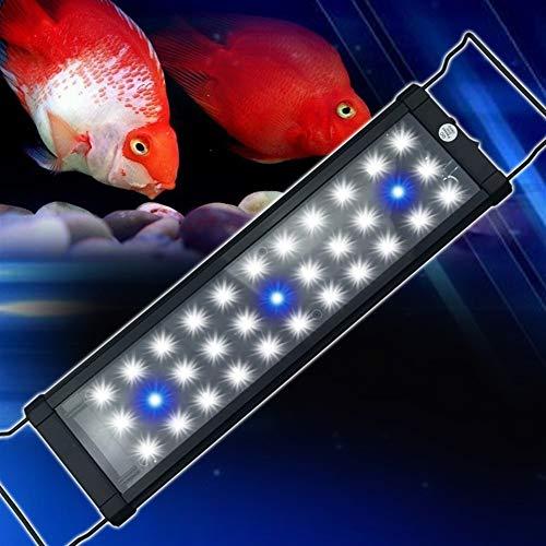 Aquarium Led Beleuchtung Aquarium Licht Hohe Helligkeit Starke Durchdringung Wunderschöne Aktivität Licht Stehen Blau Weiß Beleuchtung Aquarium (Color : 26.5x12.5x2.5cm) -