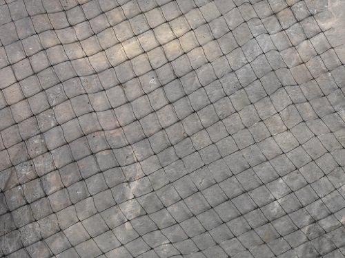 SupaGarden Ernte und Teichnetz, 4 m x 2 m