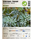 Semi di erbe - Ruta comune - Ruta graveolens - Rutaceae 100 Semi