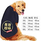 Xiaochushi Sweatshirt Mix&Match Super Soft Jumper PulloverCasual Long SleeveTops T-Shirt Autumn and Winter Golden Retriever Samoyed Dog Pet Clothes Dog Clothes-My dad is Super Handsome_7XL
