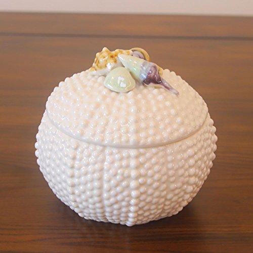 lilsn-continental-mediterranea-creativa-serbatoio-conchiglie-shell-ornamenti-gioielli-scatola-di-cer