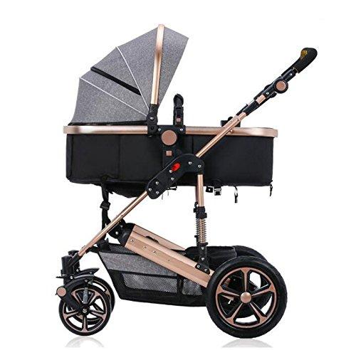 ZHZ-Bicicletas La Carretilla del bebé con un Choque se Puede Doblar Puede Sentarse Puede ser Invertida (Color : A5)
