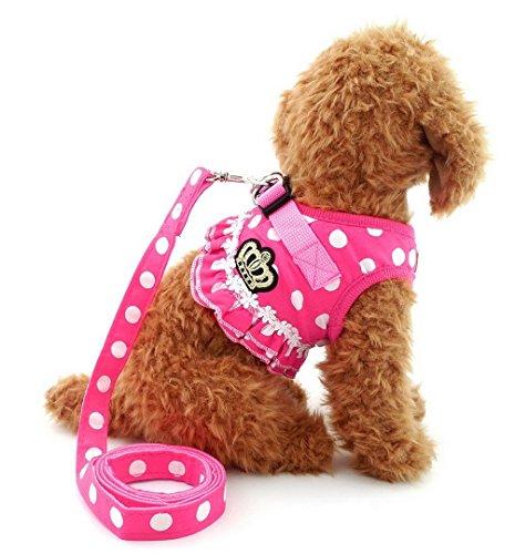 SELMAI Brother Katze Hund klein Hundegeschirr Pink Leine-Set Damen Polka Dot Weste Mesh Gepolsterte Leine für Haustier Katze Puppy Mädchen L -