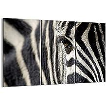 Cuadro sobre lienzo - 3 piezas - Impresión en lienzo - Ancho: 165cm, Altura: 110cm - Foto número 2195 - listo para colgar - en un marco - CE165x110-2195