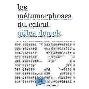 Les metamorphoses du calcul : Une étonnante histoire de mathématiques
