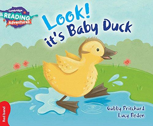 Look It's baby duck