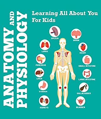Anatomy And Physiology Learning All About You For Kids Human Body