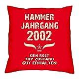 Hammer Jahrgang 2002 Sprüche Kissen 40x40 für die ganze Familie Geschenk zum 16 Geburtstag Geburtstagsgeschenk Sohn Tochter : rot