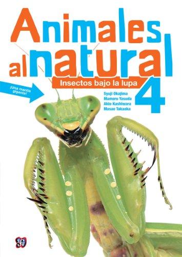 Animales al Natural, Volumen 4: Insectos Bajo la Lupa por Syuji Okajima